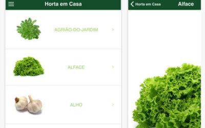 Aplicativo gratuito dá dicas sobre o cultivo de horta caseira