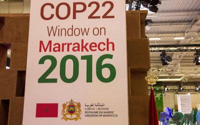 COP 22: compromisso de reduzir aquecimento global não tem volta