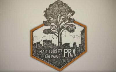 Mais Florestas PRA São Paulo lança campanha para conservar as vegetações nativas