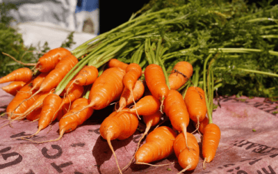 Receita: experimente deliciosos pães de casca de frutas, talos e folhas