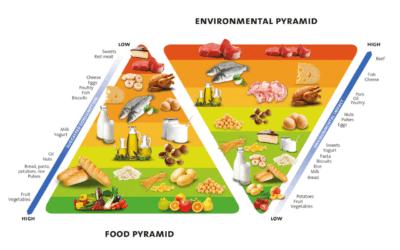 Pirâmide alimentar dupla traz orientações nutricionais e ambientais