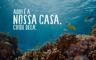 Destinação correta dos resíduos plásticos é fundamental para a saúde dos oceanos