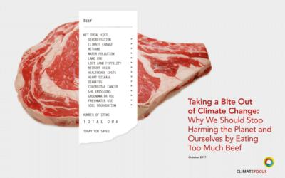 Relatório examina os impactos da produção de carne no clima, na saúde e nas florestas