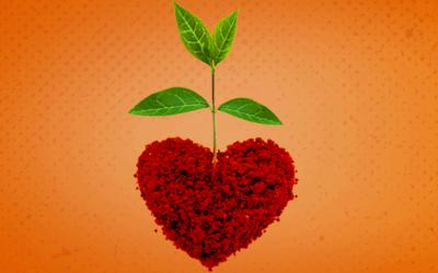 Qual foi a semente que o Akatu plantou em você?