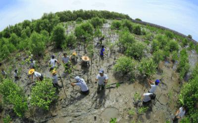 Eco-Business e Olam International premiam melhor foto com viagem para a África