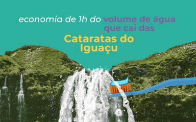 Escove os dentes de torneira fechada e economize uma hora das Cataratas de Iguaçu