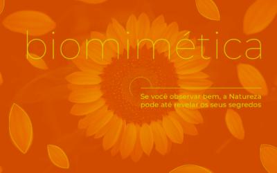 Biomimética: a resposta está na natureza