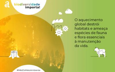 Qual a relação entre aquecimento global e biodiversidade?