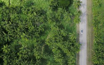 Folha de S. Paulo: O árduo caminho rumo aos Objetivos de Desenvolvimento Sustentável
