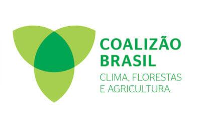 Instituto Akatu é signatário de carta da Coalizão Brasil Clima, Florestas e Agricultura ao Governo