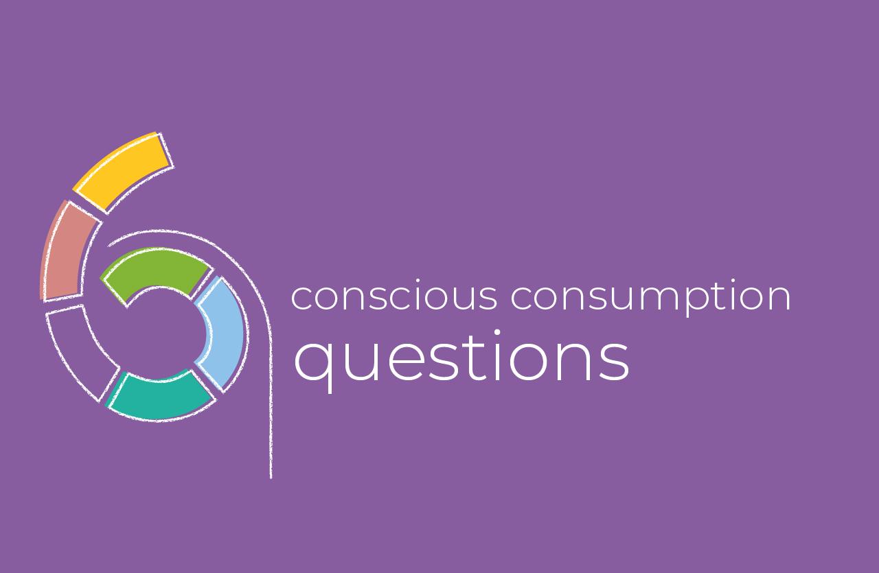 6 conscious consumption questions