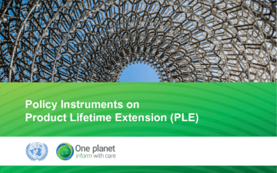Policy Instruments on Product Lifetime Extension (PLE)