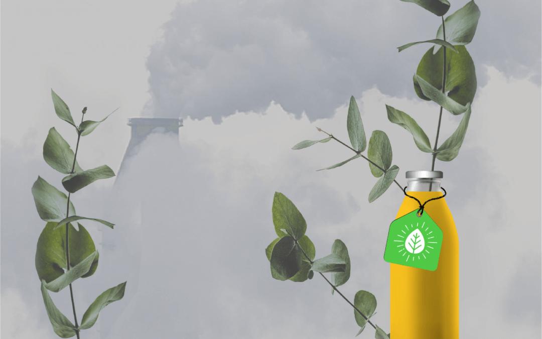 Greenwashing: o que é e como evitá-lo